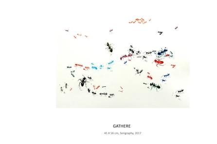 7.Gathere